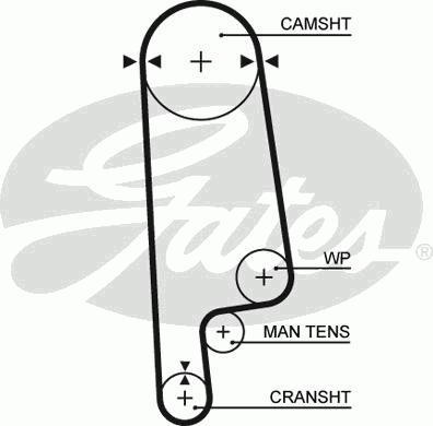 Ремень ГРМ зубчатый Z=101   (пр-во Gates) фото, цена